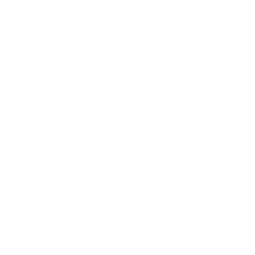 South Town Shooter